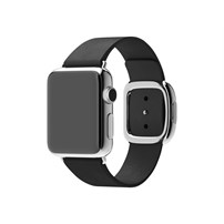 Apple 38mm Modern Buckle
